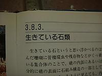 Dsc07328_2